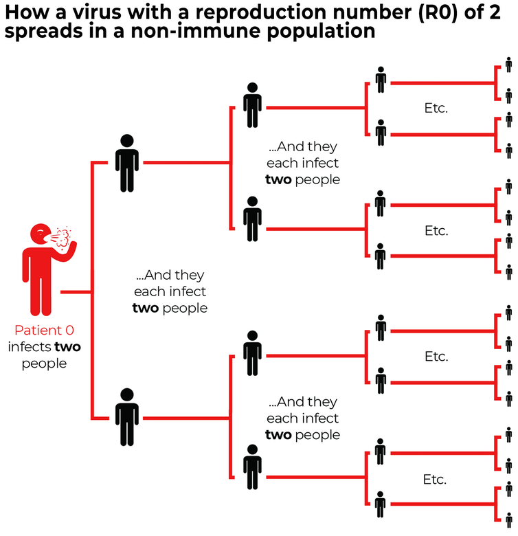 Coronavirus modelling shows the government is getting the balance right
