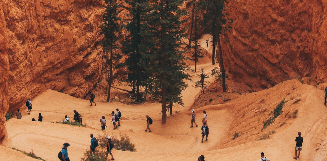 Summer visitors to American parks choose safety first over freedom to roam