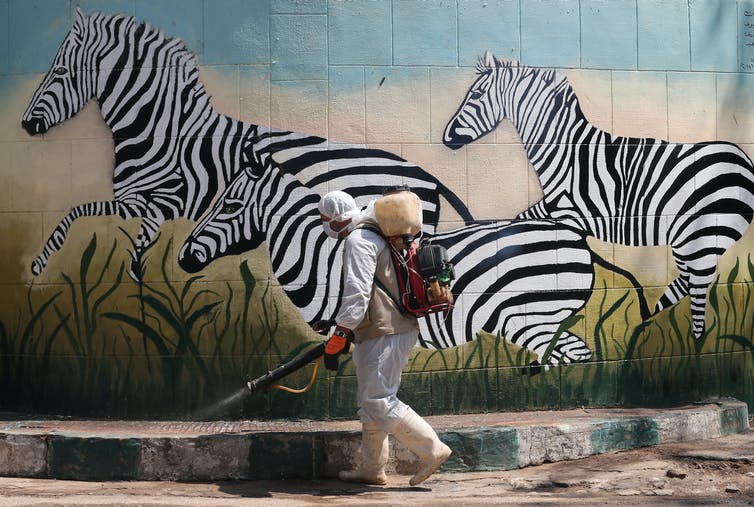 A worker disinfects Giza Zoo in Egypt, April 12 2020.