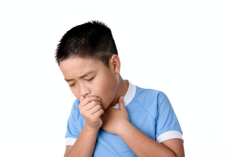 Curious Kids: why do we have boogers?