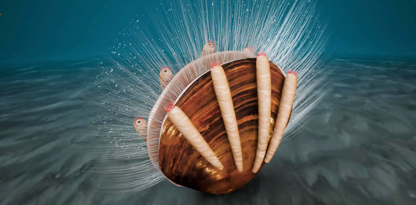 A 515 million-year-old freeloader: this nutrient-stealing marine worm is the oldest known parasite