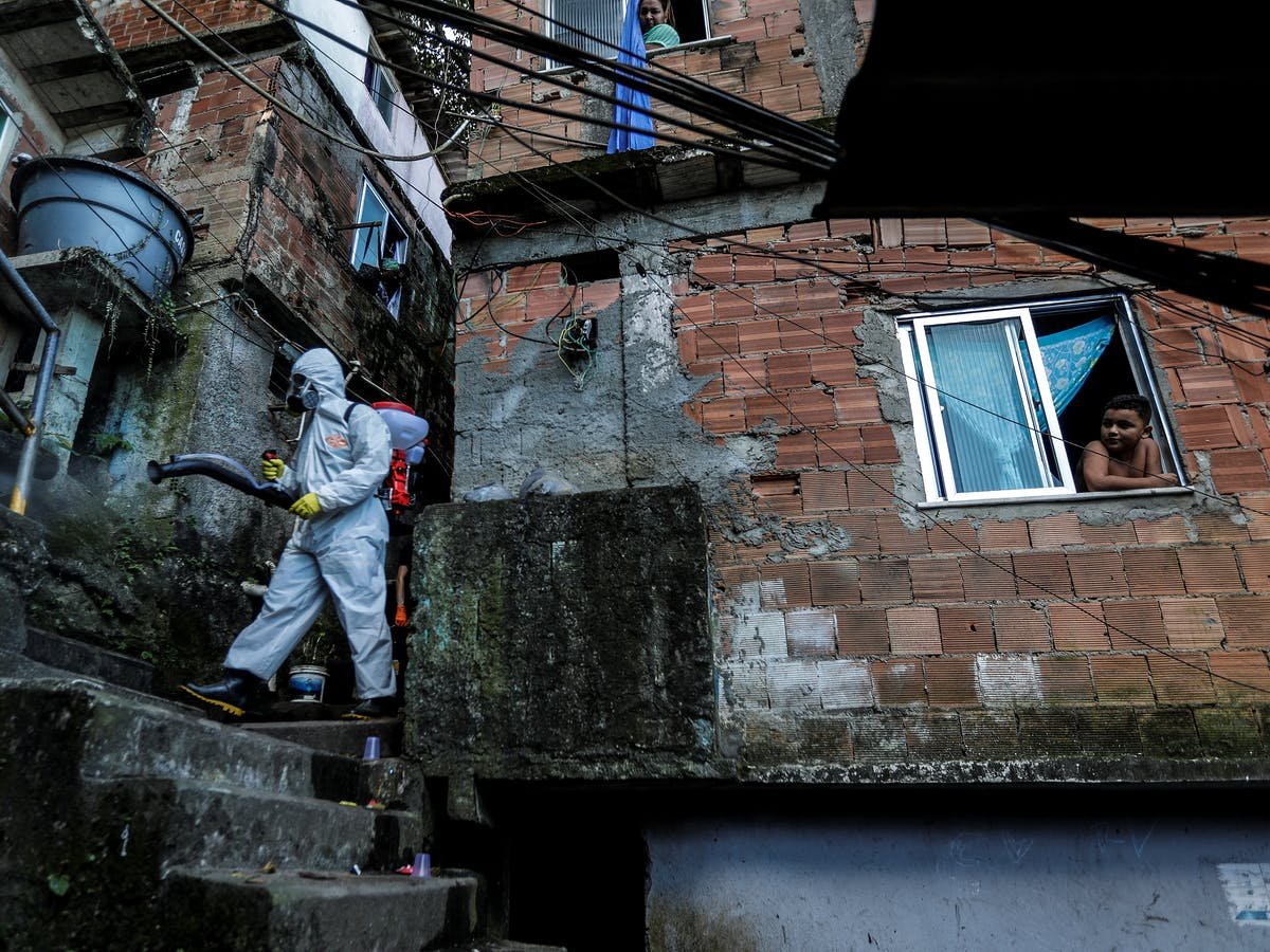 Coronavirus: Narco Gangs Could See Big Popularity Boost from Helping Residents in Latin America