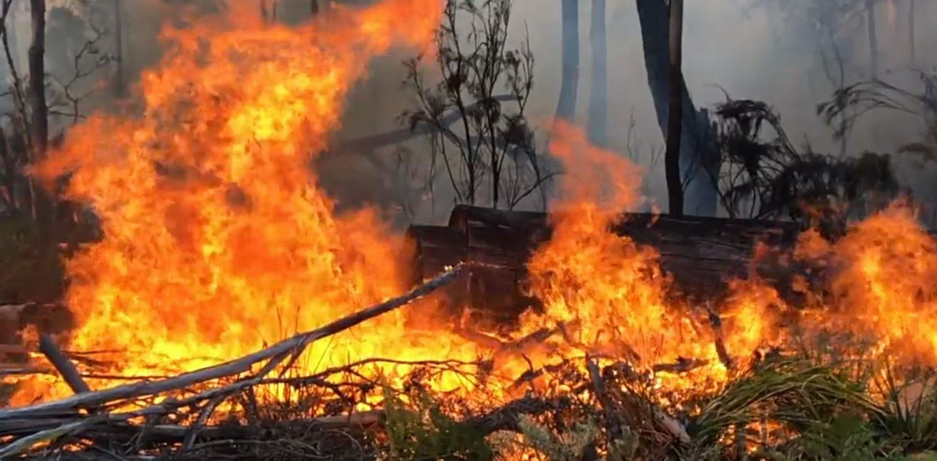 Its 12 months since the last bushfire season began, but dont expect the same this year