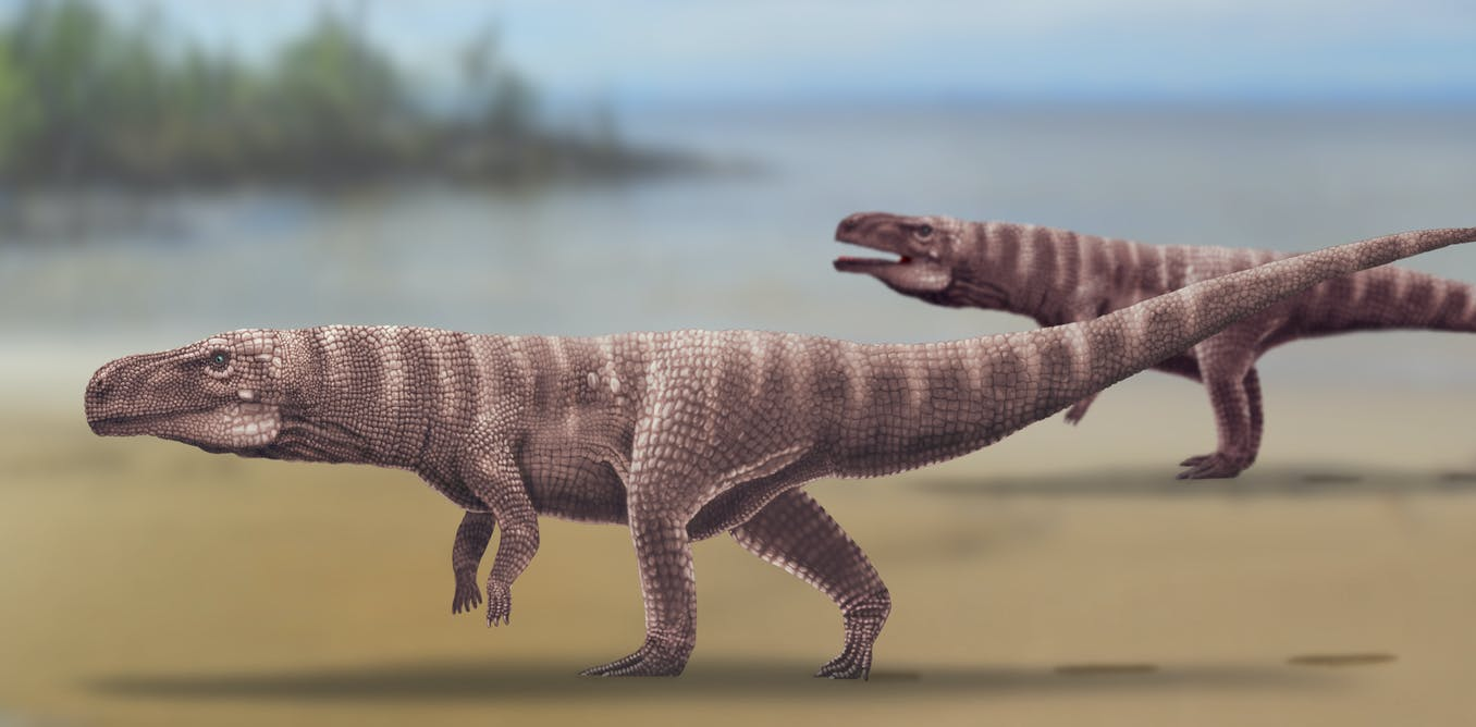 120 million years ago, giant crocodiles walked on two legs in what is now South Korea