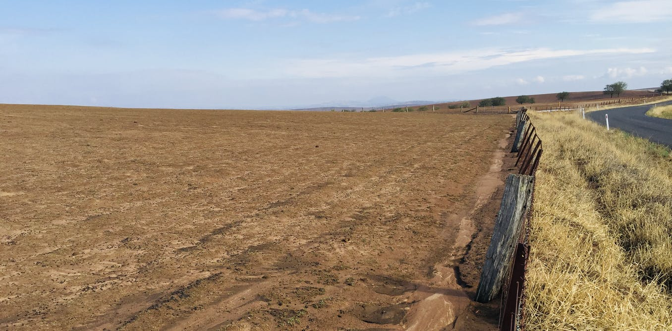 Intensive farming is eating up the Australian continent – but there's another way
