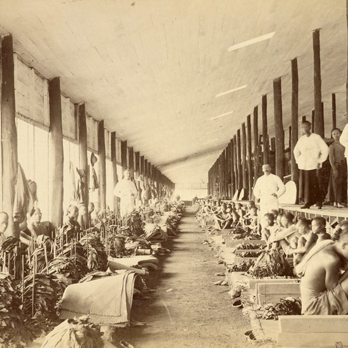 The Dark History Of Slavery And Racism In Indonesia During The