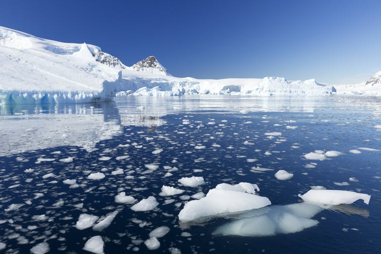 Marine life found in ancient Antarctica ice helps solve a carbon dioxide puzzle from the ice age