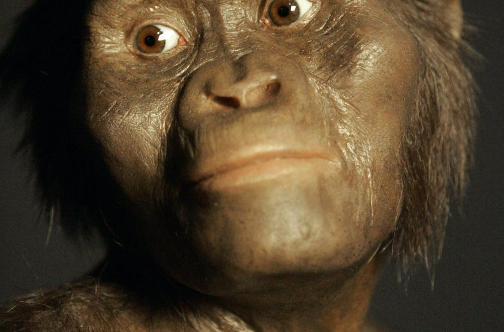 How a changing landscape and climate shaped early humans