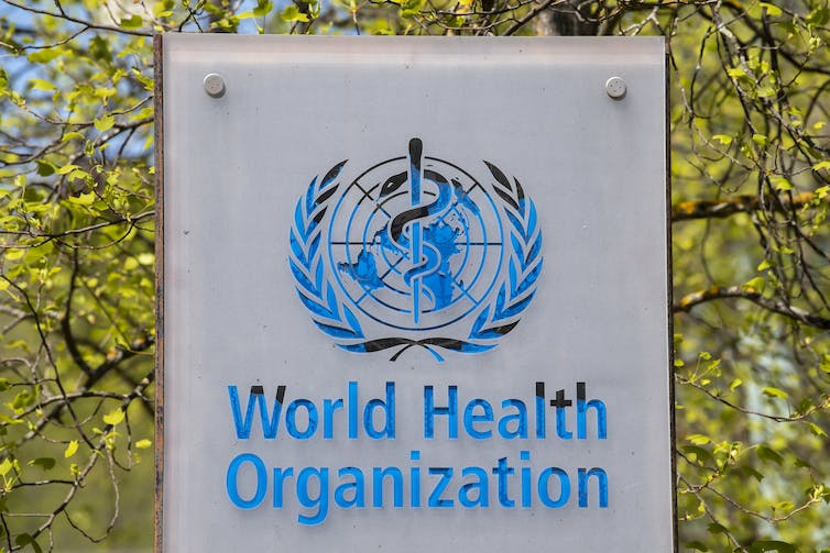 Lives at 'grave risk': Trump's withdrawal from the WHO is a hit to global health
