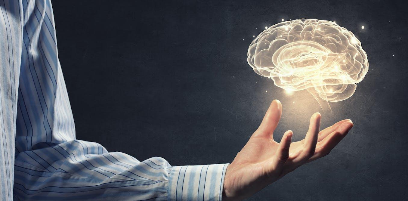 ¿Se puede concebir un cerebro separado de la persona?