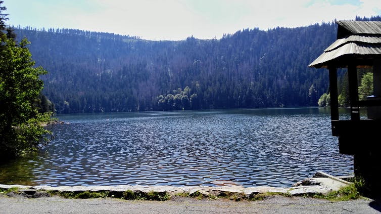 Black Lake in the Czech Republic