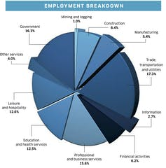 confusing pie chart of employment data