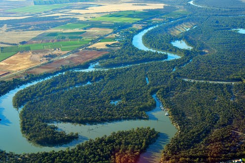 An aerial view of the Murray River snaking through bushland, beside agricultural fields.