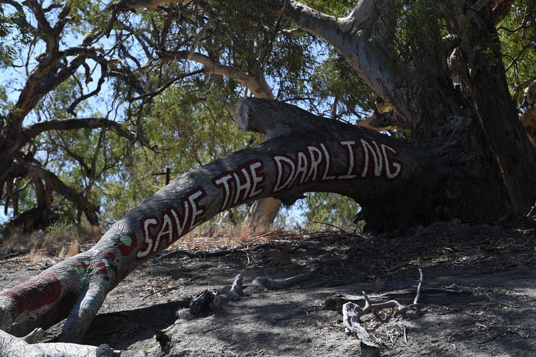 'Save the Darling' is written in white across a leaning tree trunk.