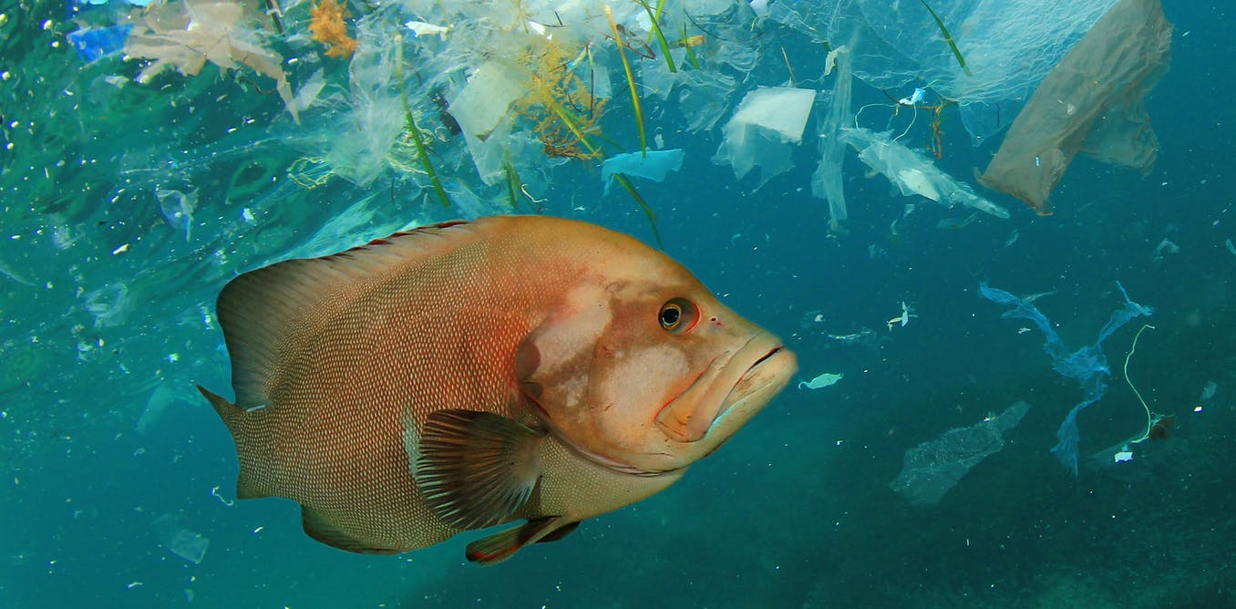 How Earth's plastic pollution problem could look by 2040