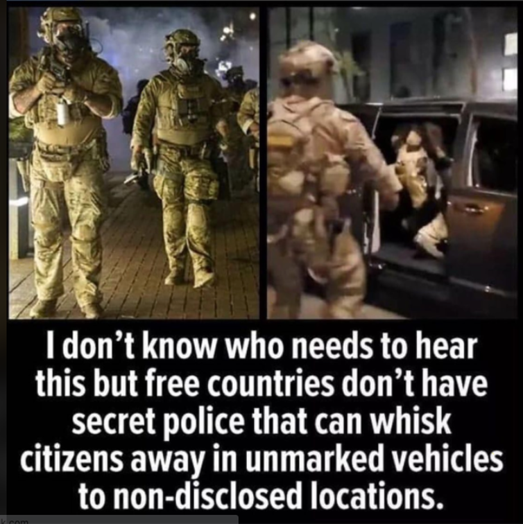 A meme showing federal officials in camouflage arresting a person and putting them into an unmarked van.