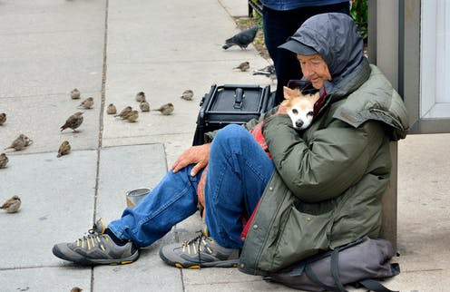 Homeless person with a dog