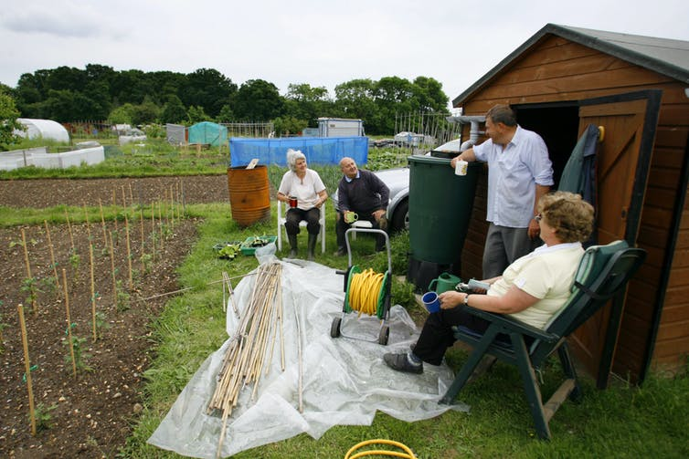 Four people take a break from gardening at an allotment