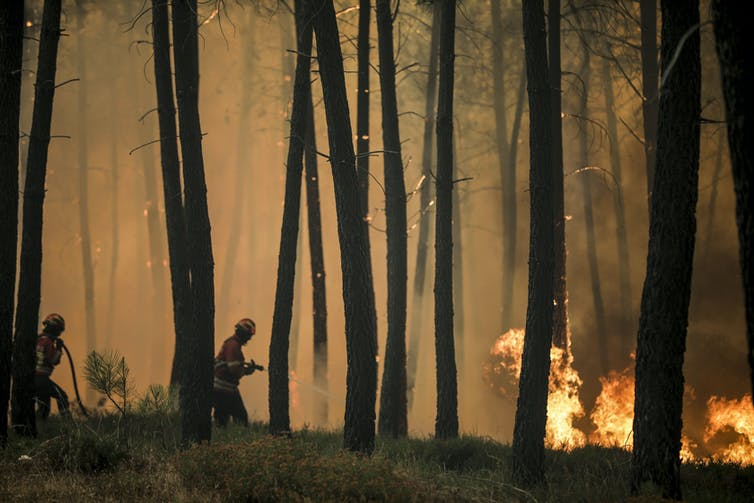 Two firefighters confront a forest fire in Portugal.