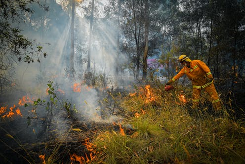A CFA strike team member carries out a controlled burn in bushland.
