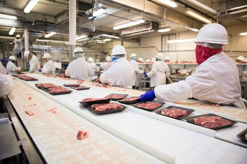 Workers on the production line at a meat processing plant