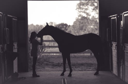 Woman kissing a horse in a stable