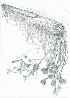 Line drawing of crinoids hanging from log with fish.