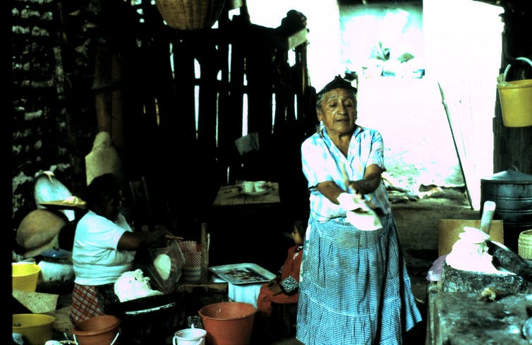Woman prepares cornmeal for tortillas