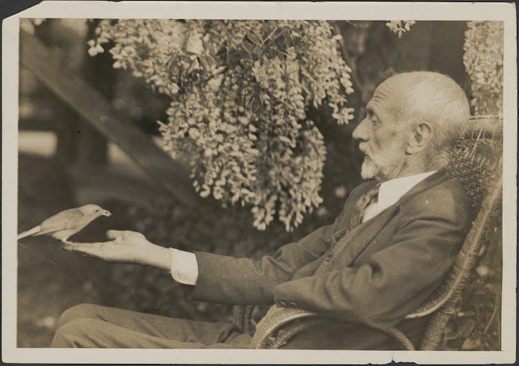 Harry Wolstenholme holding a bird in front of him in his garden in Sydney