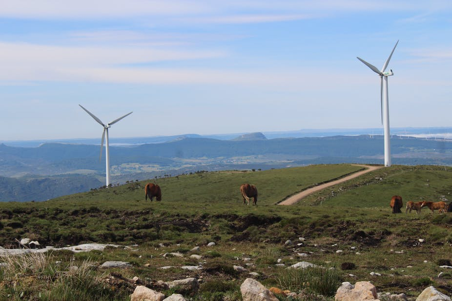A green hill with two wind turbines and five brown horses.