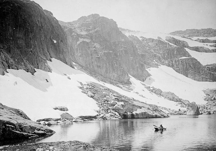 'It is not easy': how science and courage saved the stunning Australian Alps