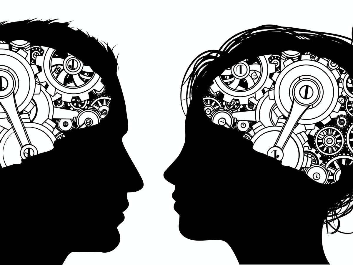 Are there 'male' and 'female' brains? Computers can see a distinction, but  they rely strongly on differences in head size