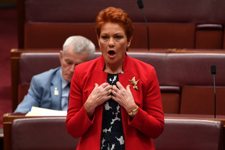 Pauline Hanson in the Senate