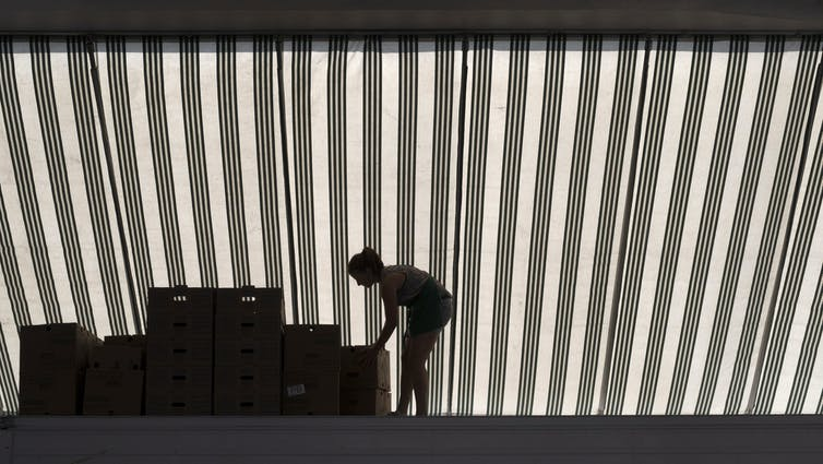 A woman bends to arrange boxes in a kiosk at a farmer's market.