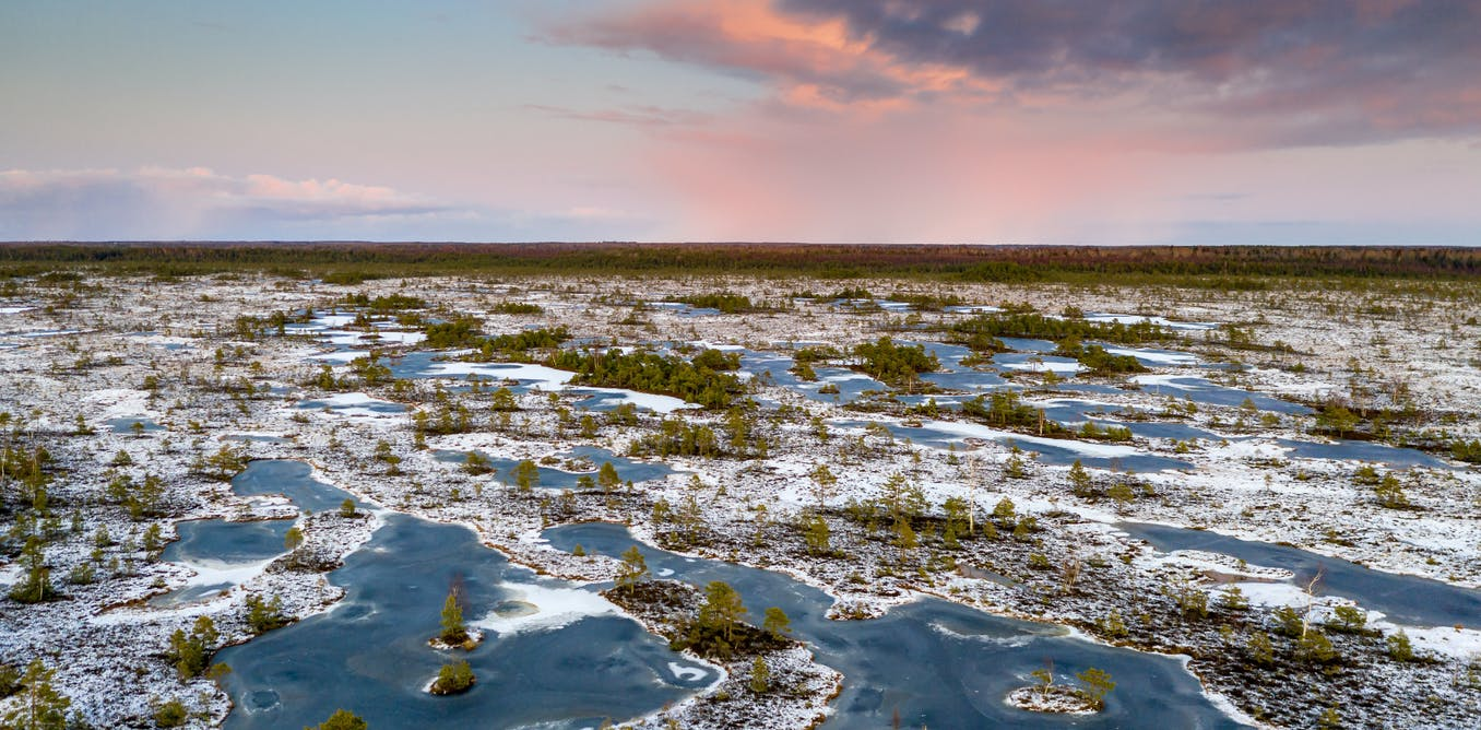 We mapped the world's frozen peatlands – what we found was very worrying