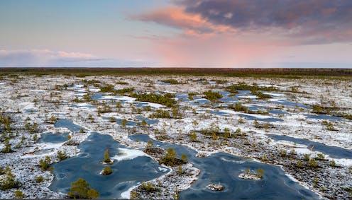aerial photo of frozen peat bog