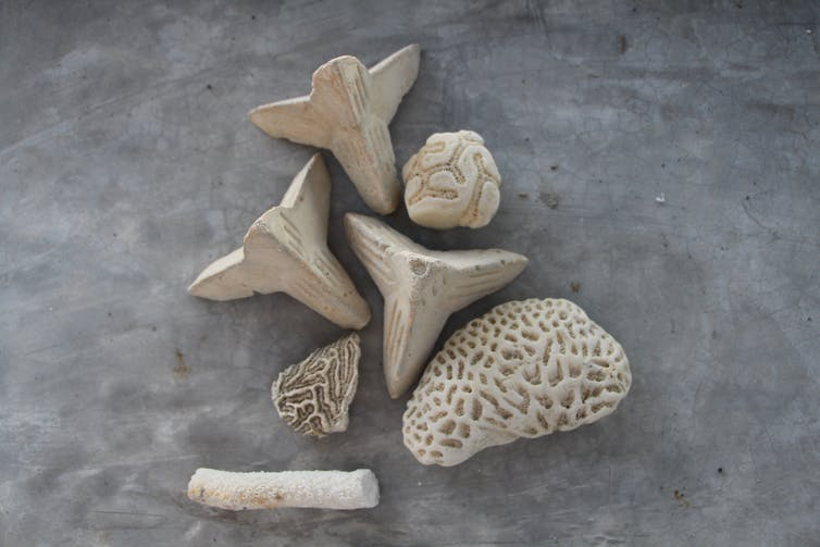 A selection of pieces of artificial coral rubble.