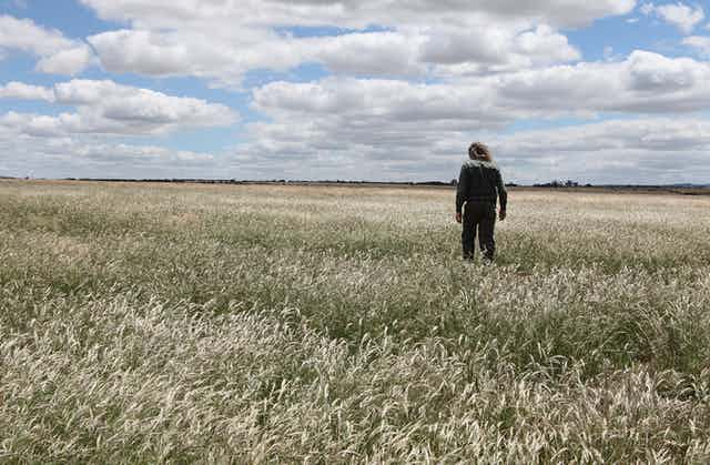 A person stands in a sweeping flat grassland.