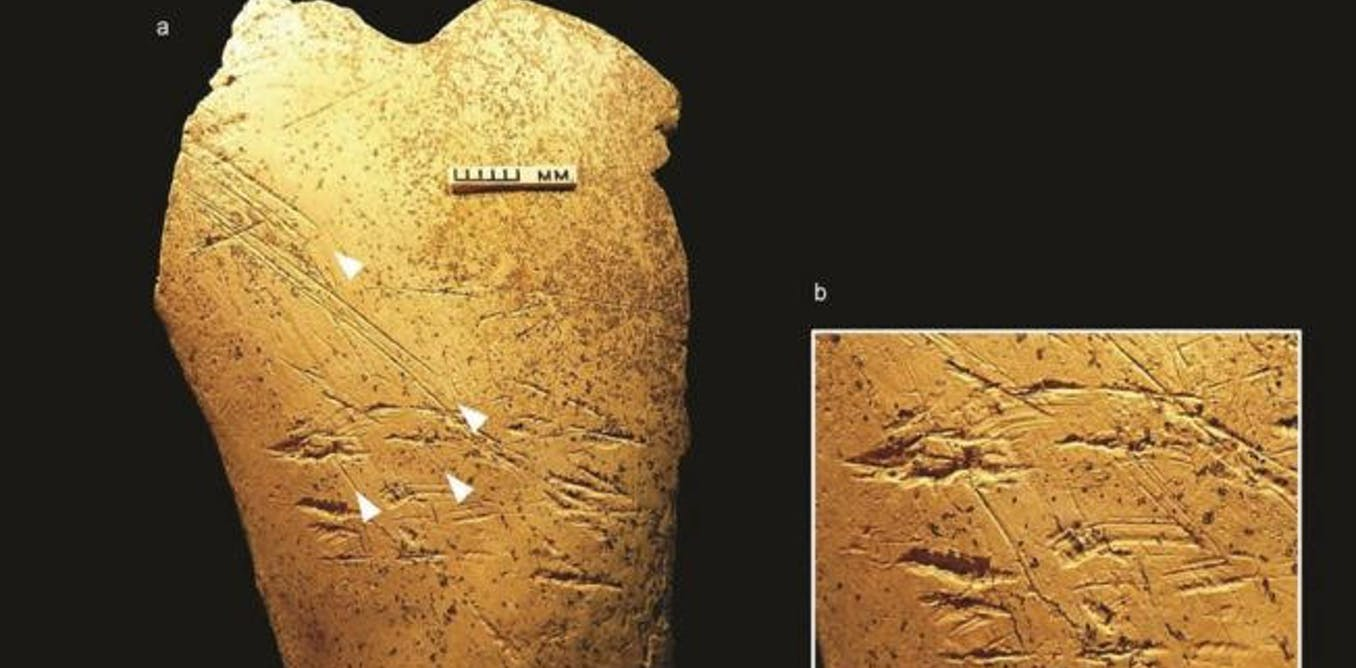 Boxgrove: how we found Europe's oldest bone tools – and what we learned about their makers