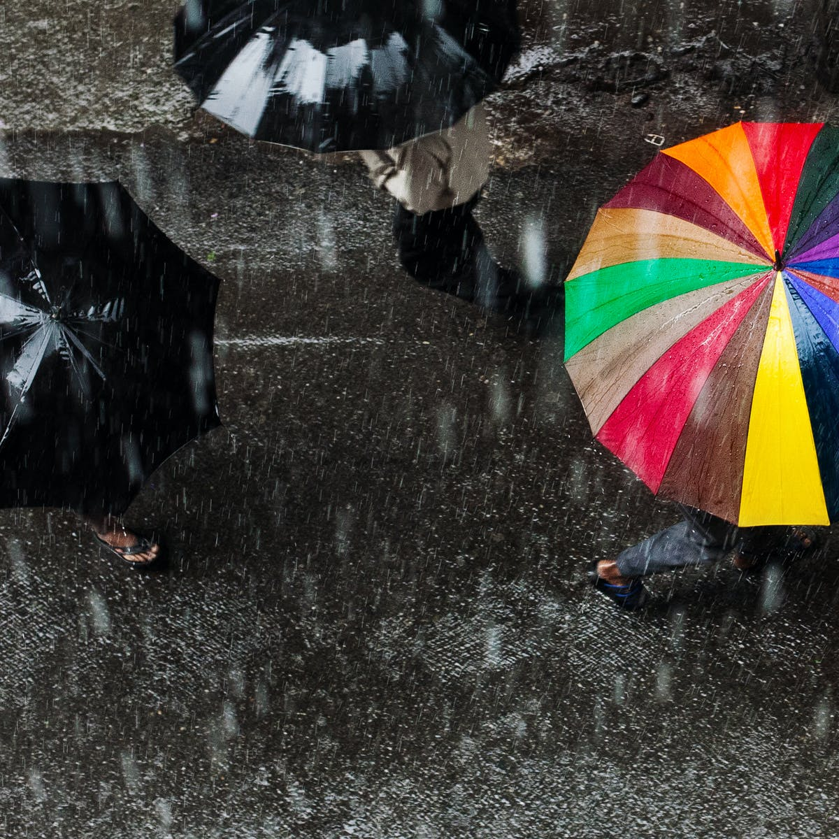 Why Does Some Rain Fall Harder Than Other Rain Find the best free stock images about rain. why does some rain fall harder than