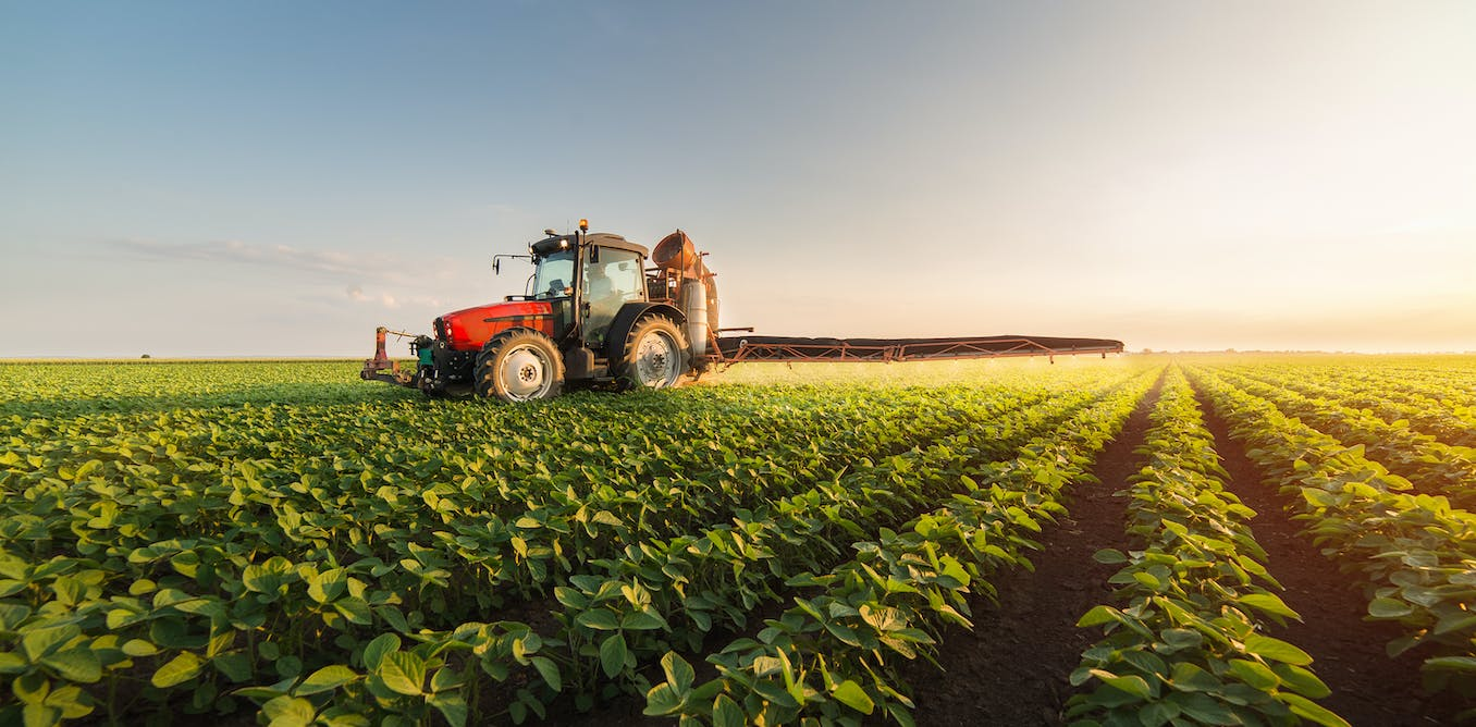 We each get 7 square metres of cropland per day. Too much booze and pizza makes us exceed it