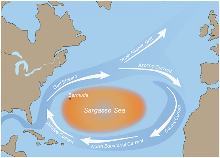 Map of Sargasso Sea with ocean currents.