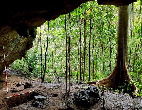 View of rainforest from inside cave