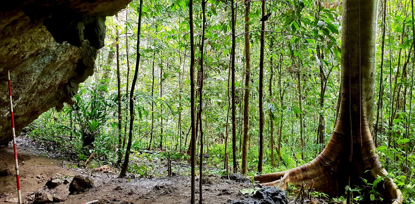 Stone tools from a remote cave reveal how island-hopping humans made a living in the jungle millennia ago