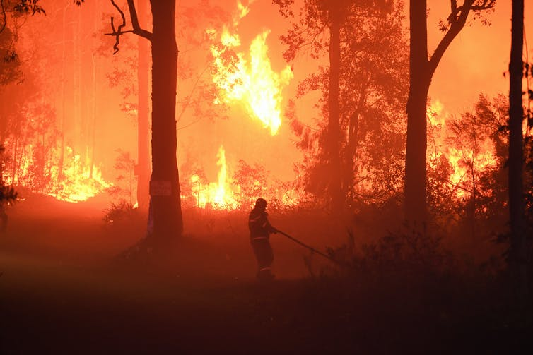 A firefighter tackling a bushfire in New South Wales.
