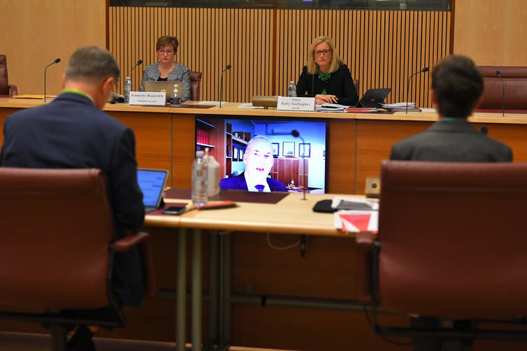 Aged Care Minister Richard Colebeck appearing at a Senate hearing via video link.
