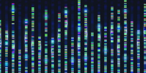 Coloured bands of genetic material representing sequencing