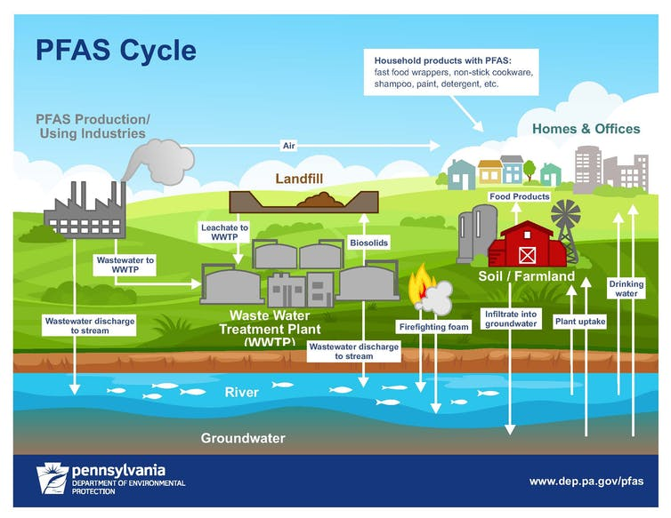 How PFAS chemicals get into the environment.
