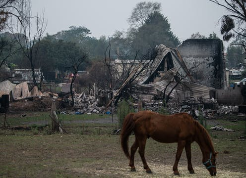 A horse grazes in front of a burnt-down house.