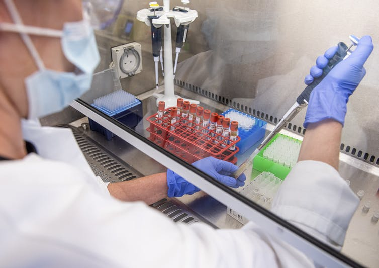 Scientist uses a pipette